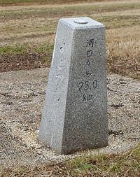 181219